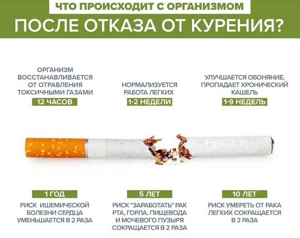 Почему толстеют когда бросают курить: 4 ключевые причины