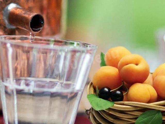 Самогон из абрикосов в домашних условиях: как сделать?