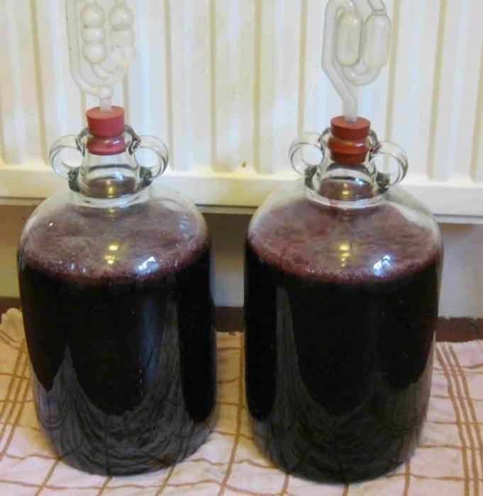 Технология приготовления крепленого вина. рассмотрим крепление домашнего вина