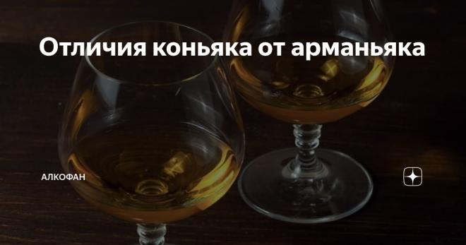 Арманьяк и коньяк: разница напитков