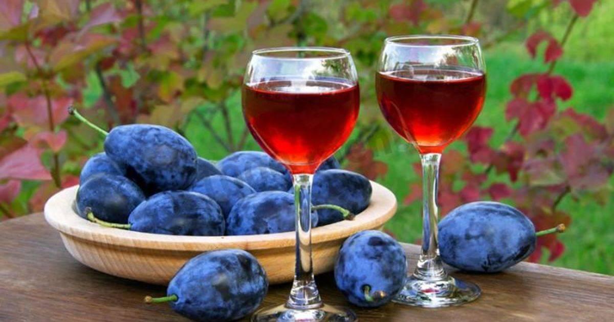 Сливовая наливка на водке: рецепт в домашних условиях
