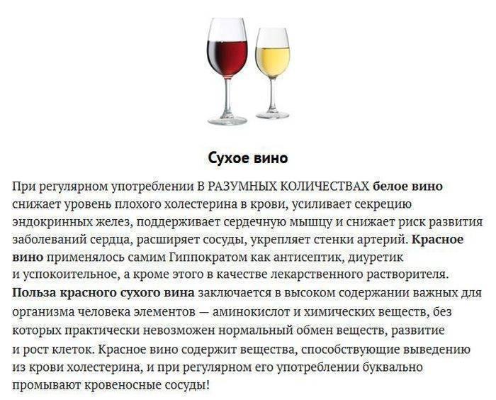 Белое вино – польза и вред для мужчин? по актуальным в [2018] данным, все ценные свойства напитка? и как употреблять его без риска для здоровья | suhoy.guru