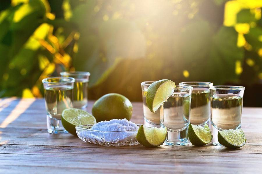 Как пить текилу и чем правильно закусывать — все варианты
