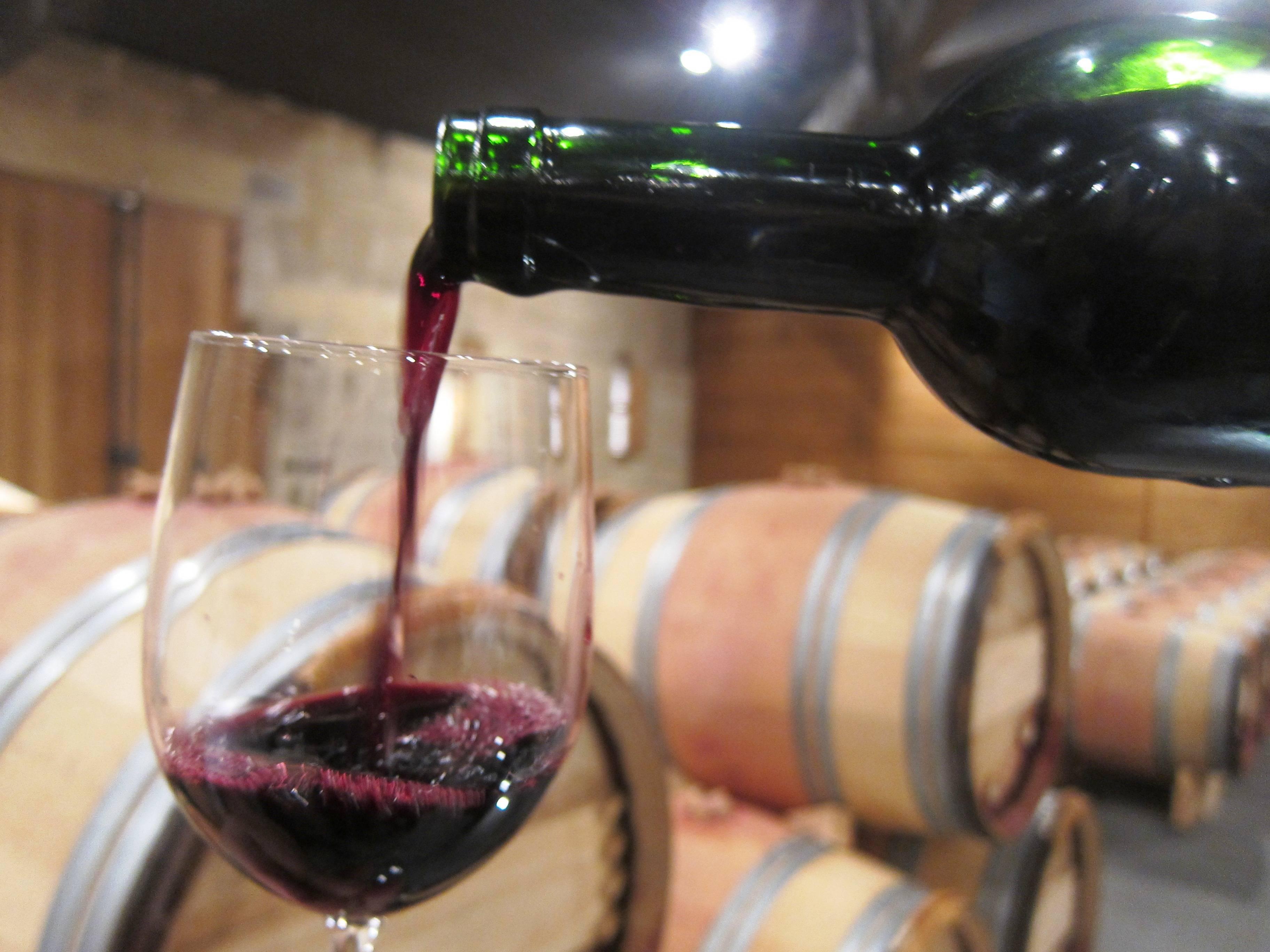 Сорта винограда для красных вин бордо