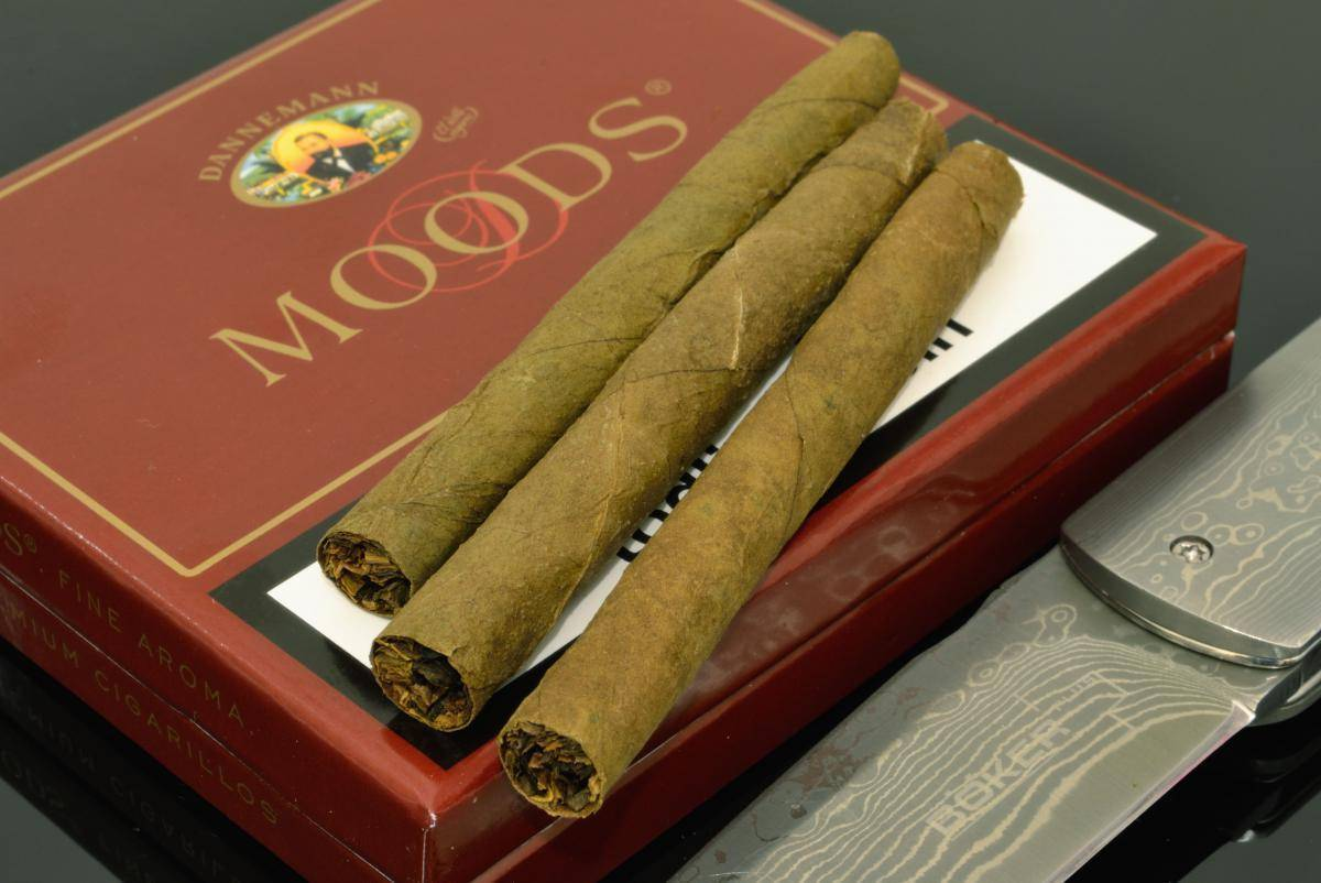 3 марки отличных сигарет, на которые вам жалко денег, а зря: настоящий табак без суррогата