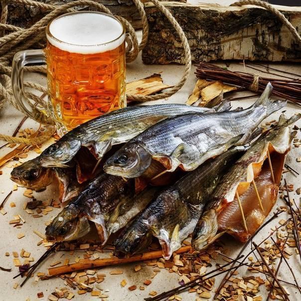 Рыба под пиво: лучшие сочетания стилей пива и видов рыбы