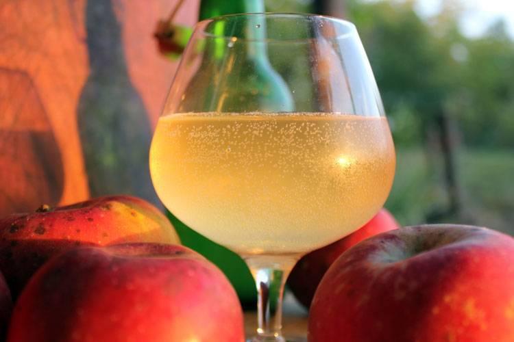 Простой рецепт самогона из яблок