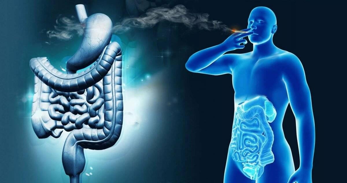 Как курение влияет на пищеварительную систему: негативное влияние никотина на органы пищеварения, вызывают ли вейп, кальян и алкоголь проблемы с жкт