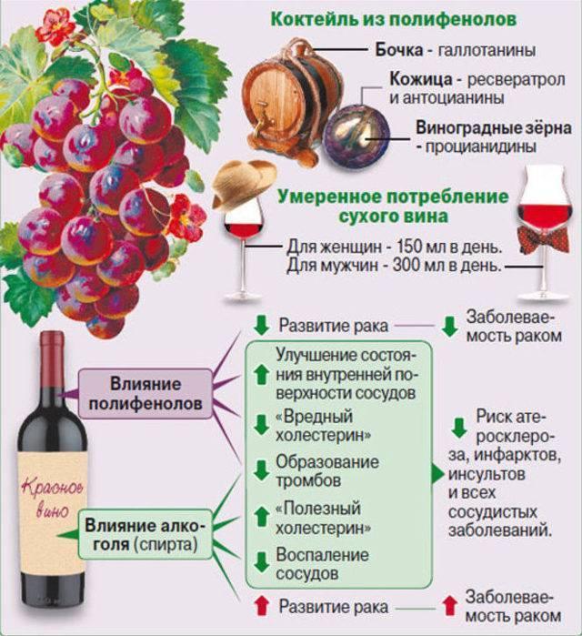 Употребление спиртного во время православных постов. можно ли пить алкоголь в пост с точки зрения медицины