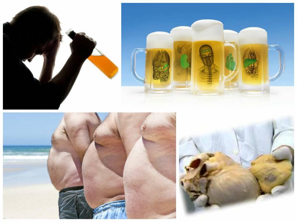Как пиво влияет на мужской организм?