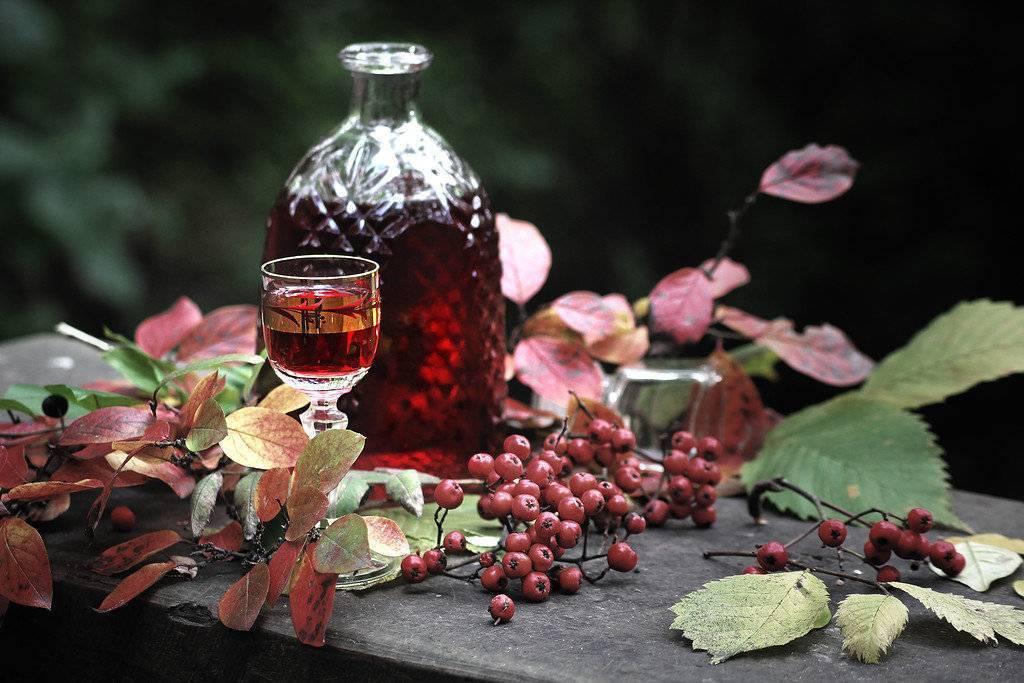 Ликер из красной рябины - 4 рецепта на водке, спирту и коньяке