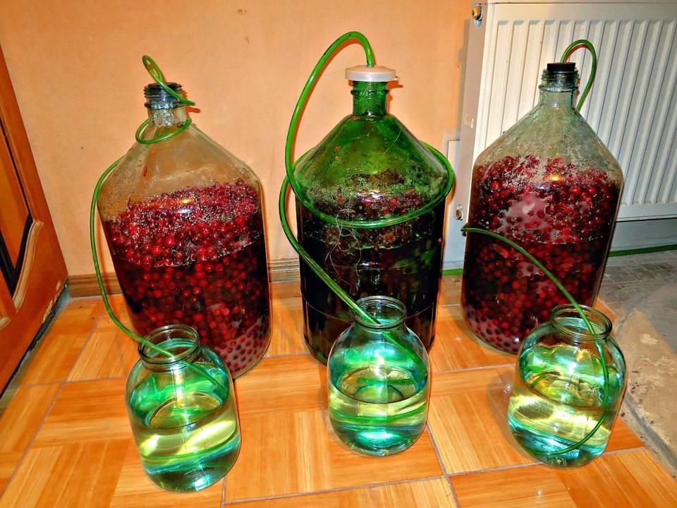Вино из винограда - простые пошаговые рецепты для приготовления в домашних условиях