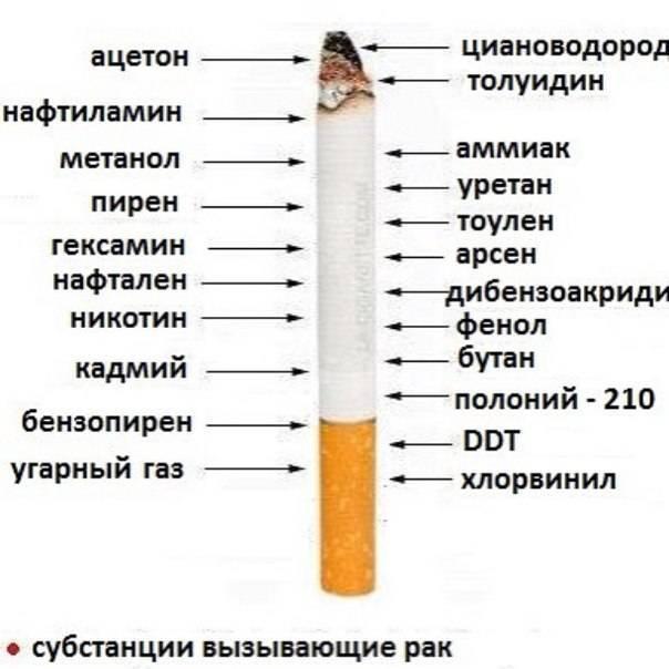 Как курение влияет на кожу лица: фото курящих и некурящих мужчин и женщин , какой вред наносит курение внешности и как она меняется до и после отказа от сигарет