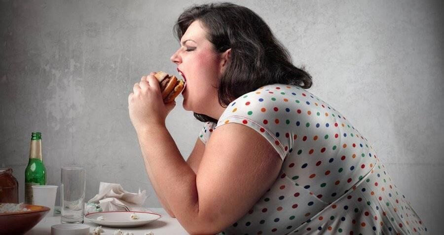 Почему толстеют от алкоголя. от каких спиртных напитков набирают вес