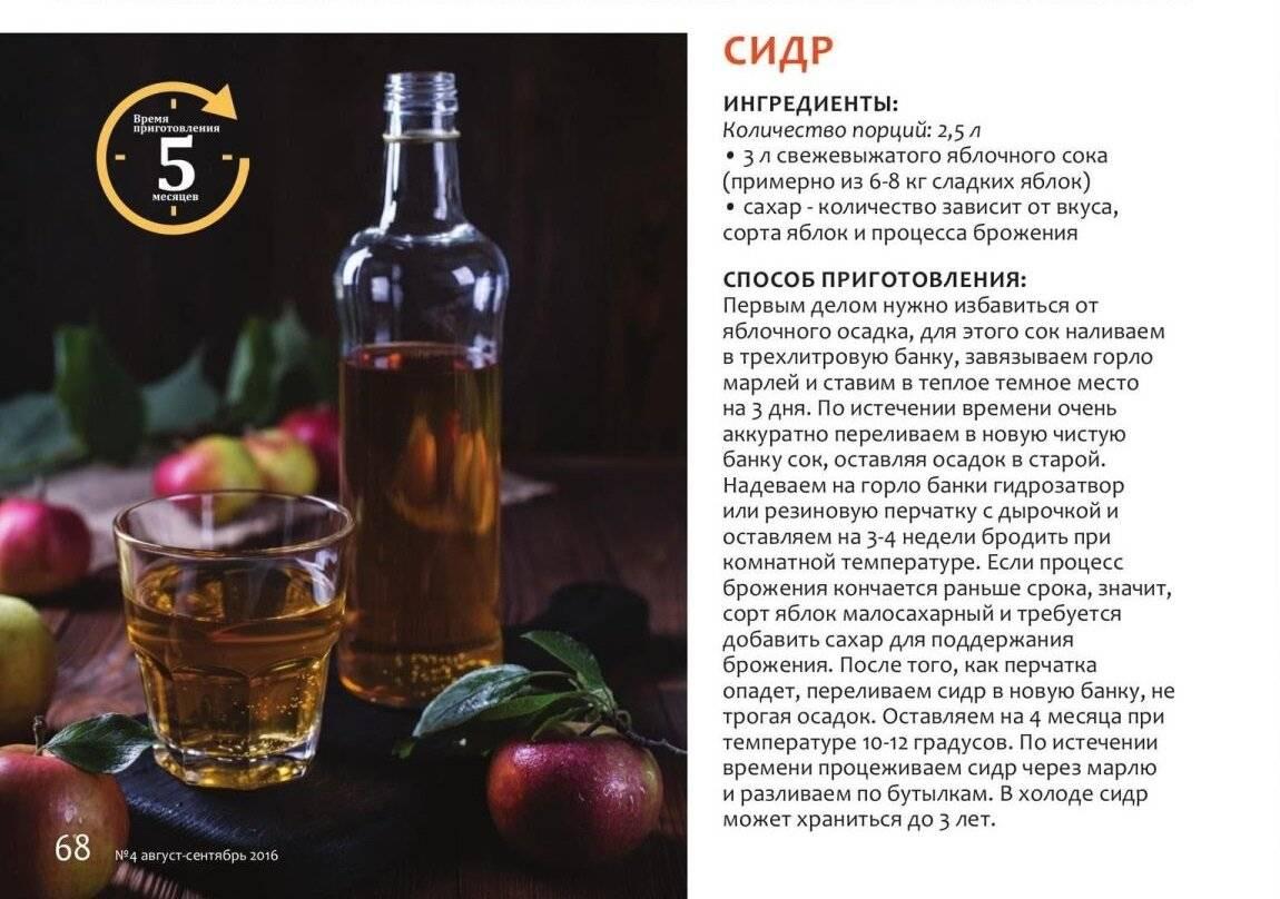 Яблочный сидр в домашних условиях: простой рецепт, сколько градусов в нем, фото и видео