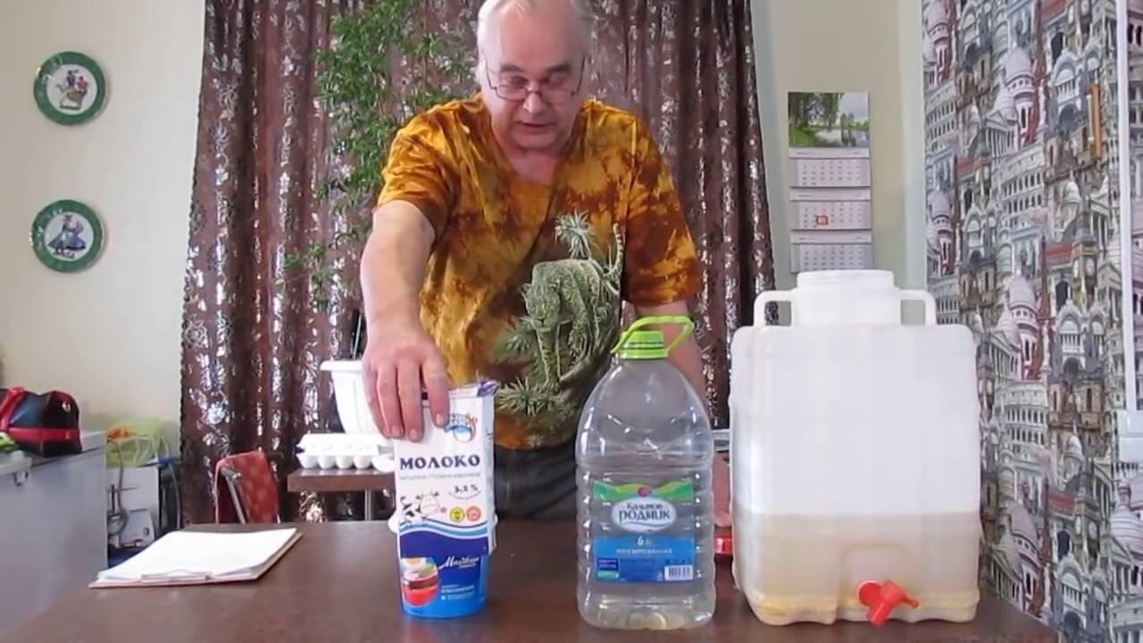 Рецепт браги для питья: как сделать в домашних условиях