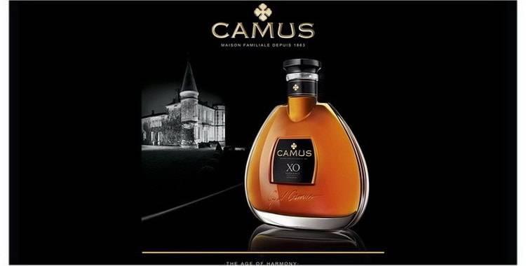 Camus (коньяк): описание и отзывы