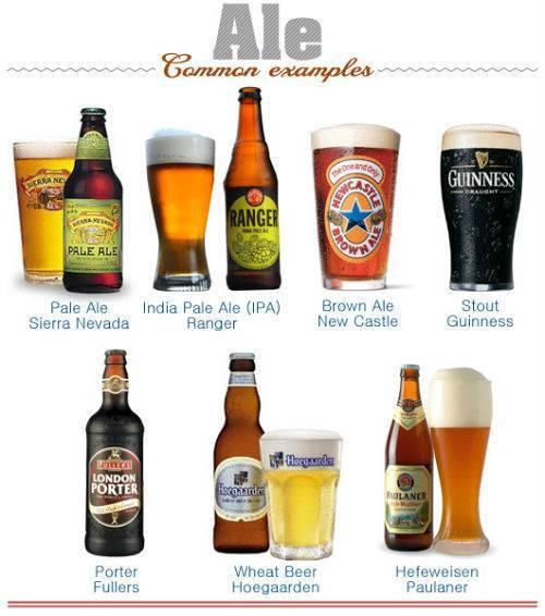Чем отличает пиво от пивного напитка