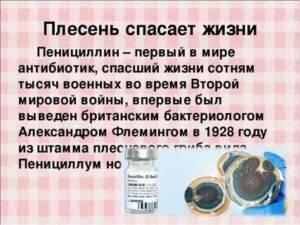 Коктейль пенициллин простой домашний рецепт пошагово с фото