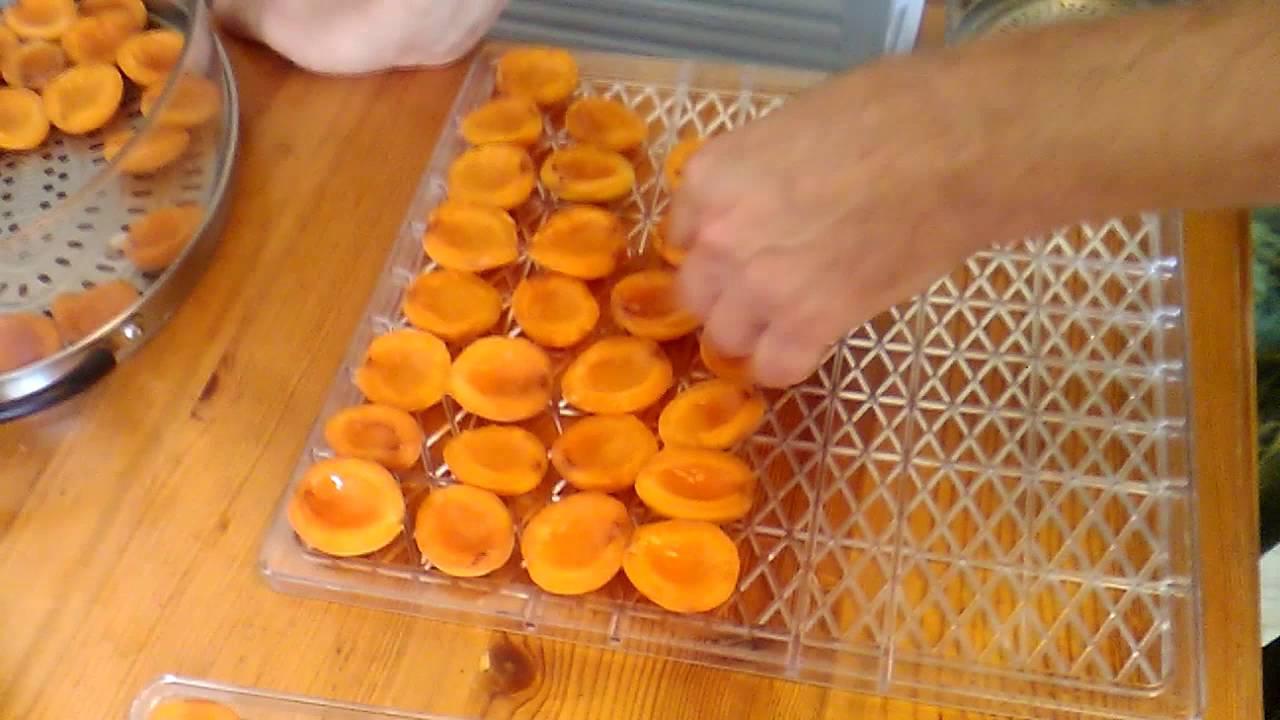 Детка, ты абрикосмос! готовим вкуснейший абрикосовый самогон