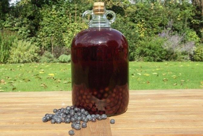 Готовим вино из ирги в домашних условиях