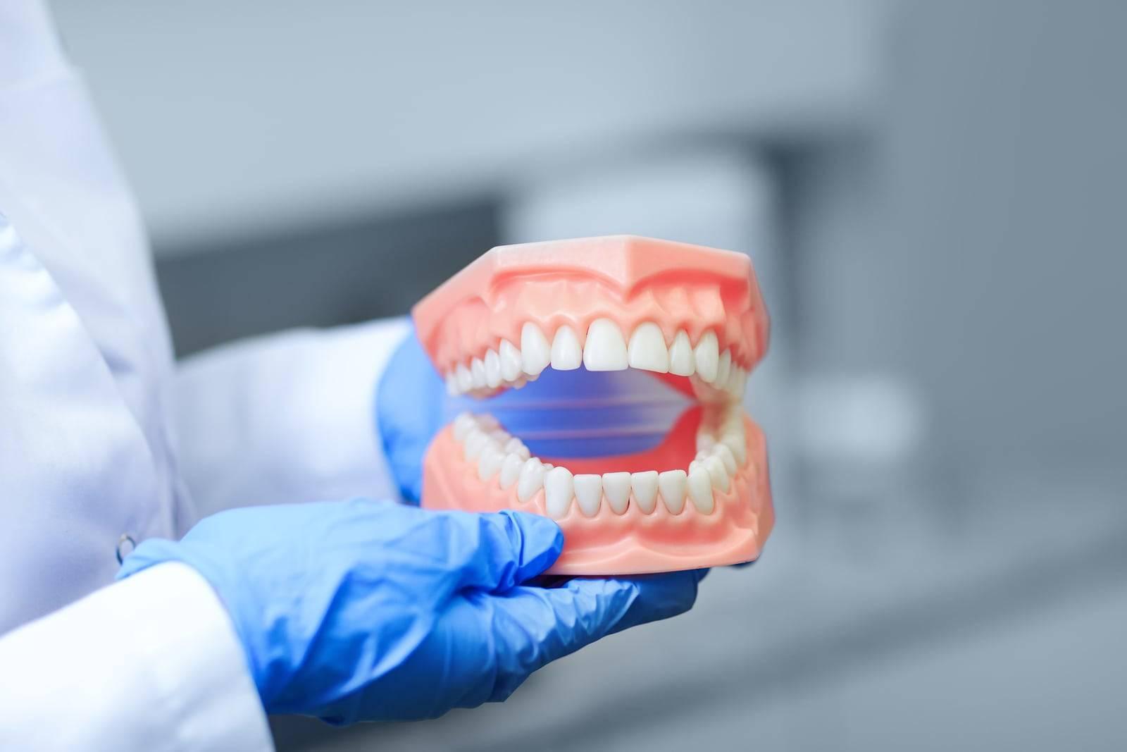 Можно ли есть арбуз после отбеливания зубов