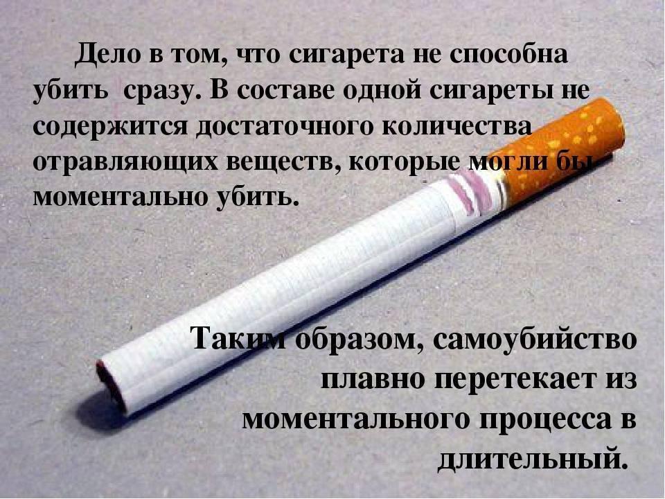 Влияние ментола на потенцию: польза, вред, ментоловые сигареты