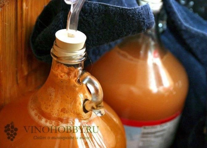 Брага из меда на самогоне. рецепт самогона с медом — меховуха древнерусская