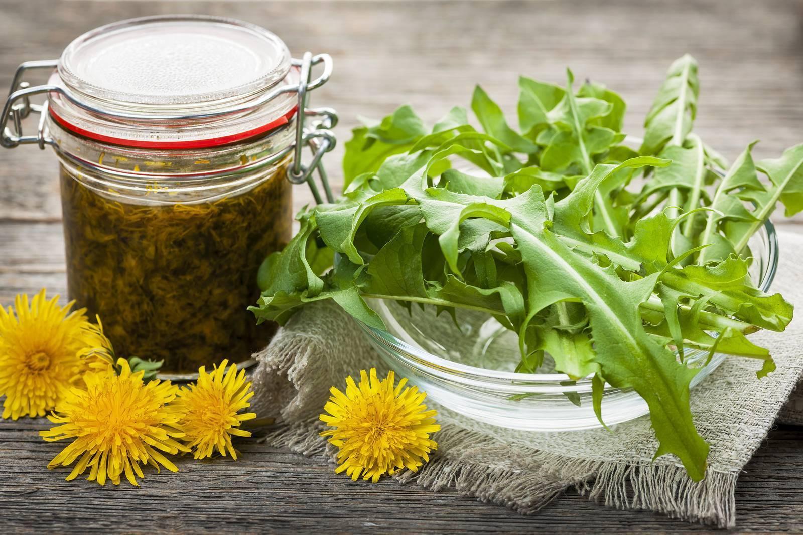 Настойка ромашки:применение,противопоказания и рецепты