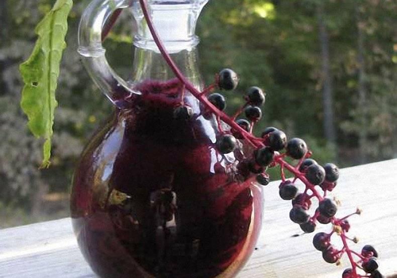 Рябиновая настойка – уникальные рецепты напитка домашнего приготовления