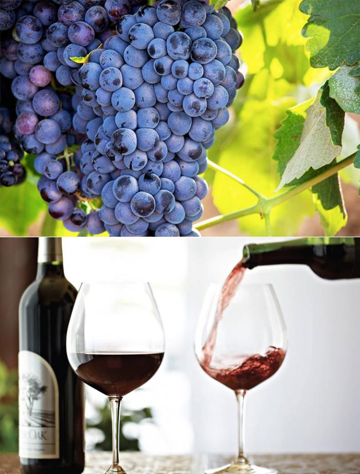 Полезно ли красное вино для головного мозга — 6 научных фактов
