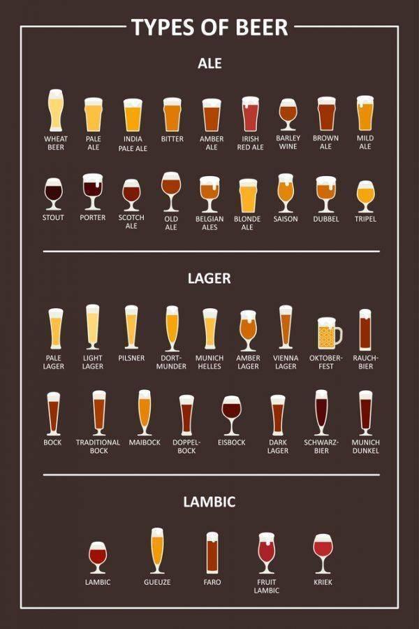 Бледные эли в сравнении — pivo.by