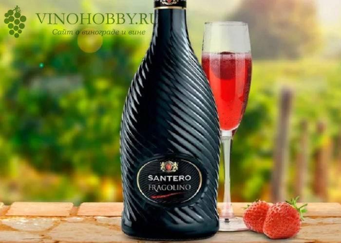 Фраголино (fragolino) – итальянское виноградное вино и шампанское с клубничным вкусом