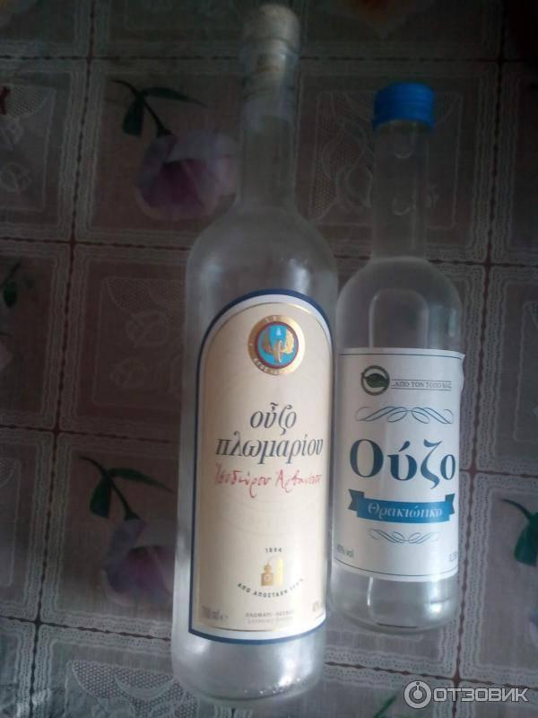 Музо греческих поэтов. всё об ouzo – легендарном напитке из греции!