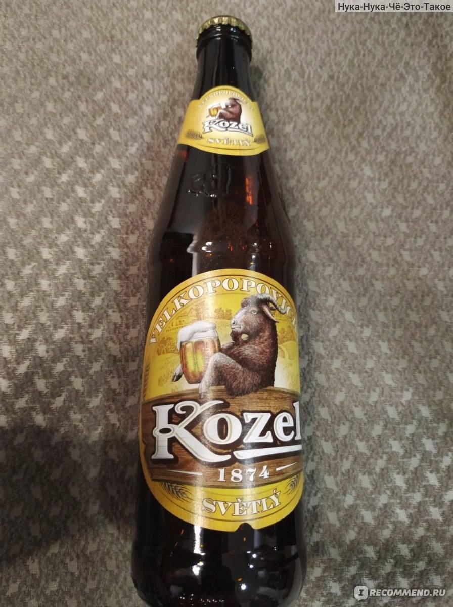 Пиво Велкопоповицкий Козел Безалкогольное и его особенности