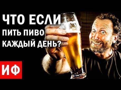 Что будет с организмом, если месяц каждый день пить по 3 бутылки пива