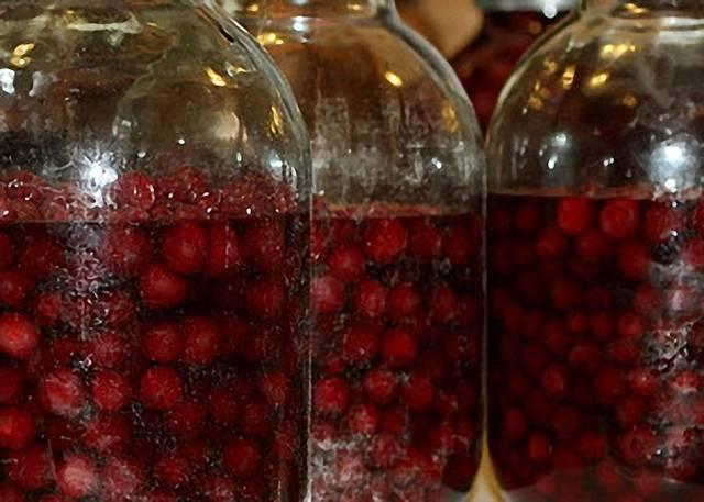 Вишневая настойка на самогоне. подготовка сырья, технология, как настоять на вишне по рецепту?