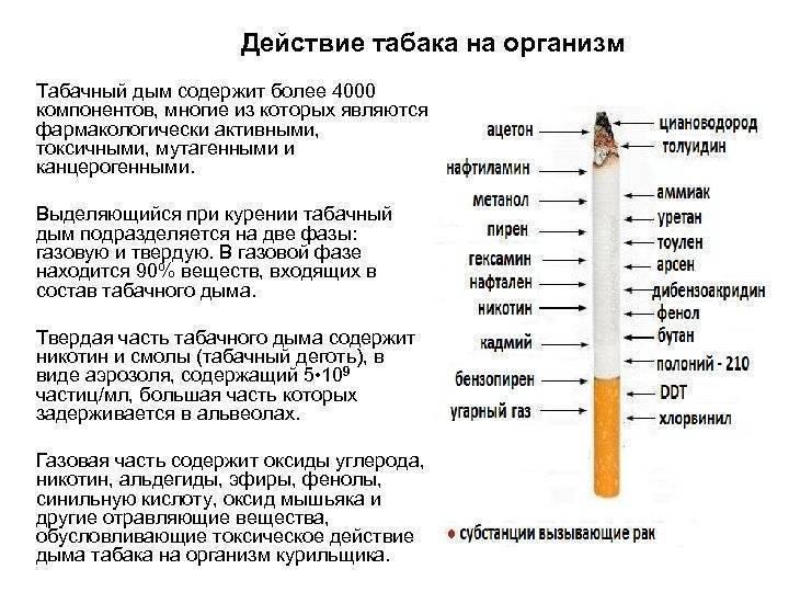 Курение трубки: влияние табака на организм, отличие электронных сигар