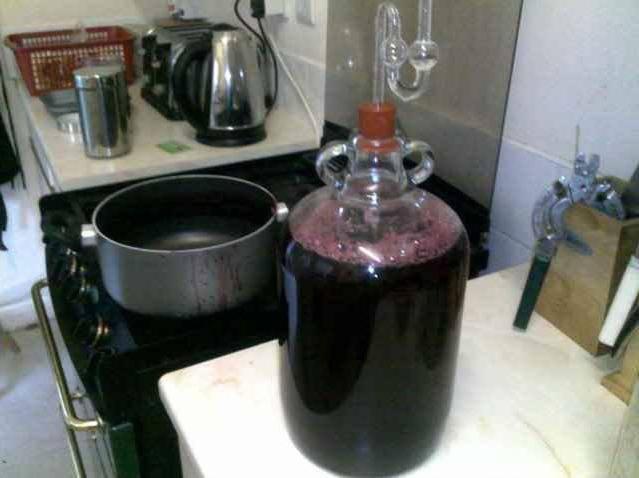 Виноградное вино: технология домашнего приготовления | напитки мира