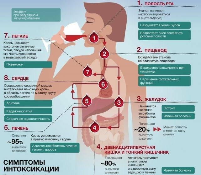 Болит горло после алкоголя | wine & water