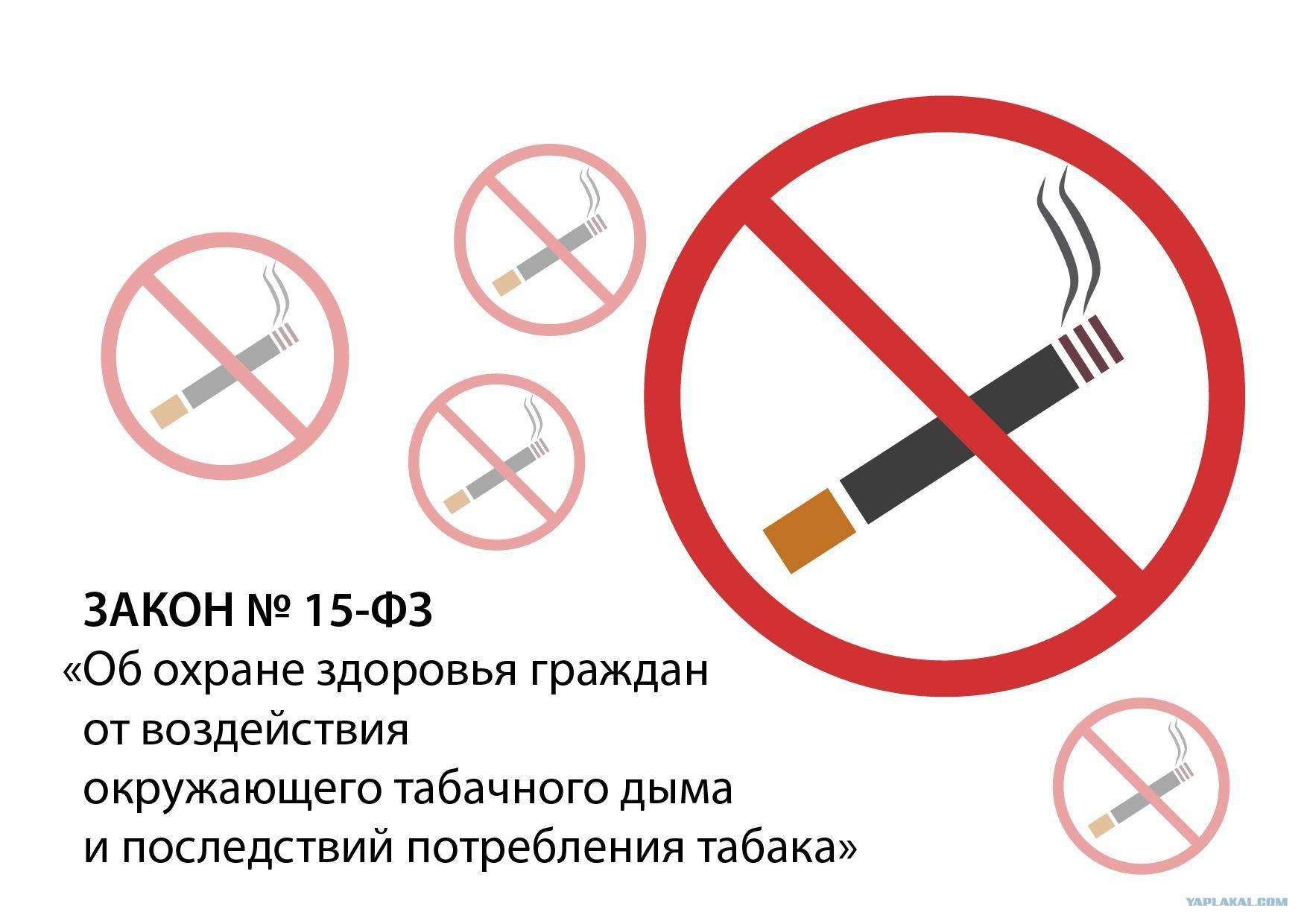 Можно ли курить айкос в общественном месте – запрещено или нет