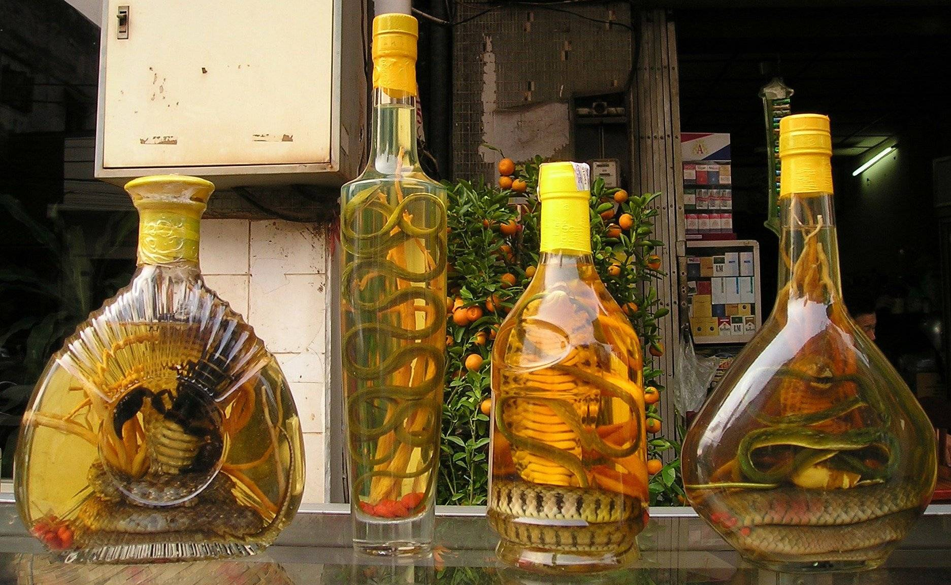 Змеевка (вино или водка со змеей) – экзотическое спиртное востока   алкофан   яндекс дзен