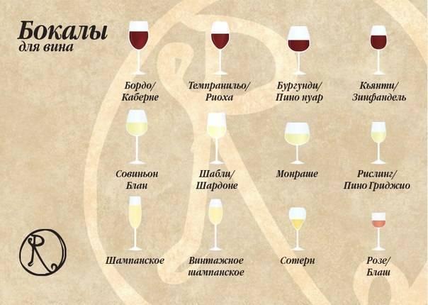 Какое вино подходит к мясу