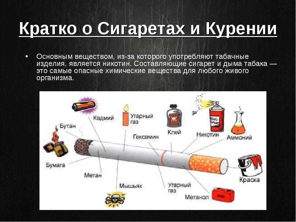 5 марок сигарет для тех, кто хочет курить настоящий табак без добавления опасных присадок | табачная культура | яндекс дзен