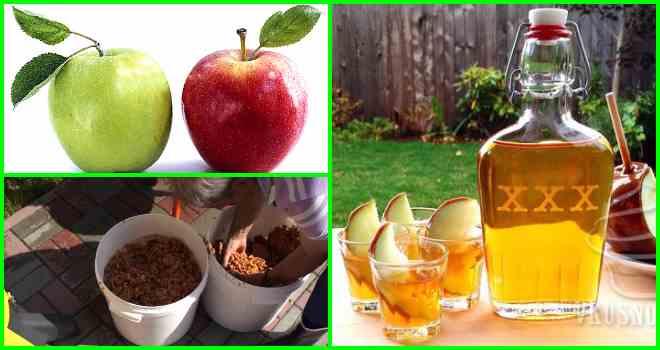 Брага из яблок для самогона в домашних условиях