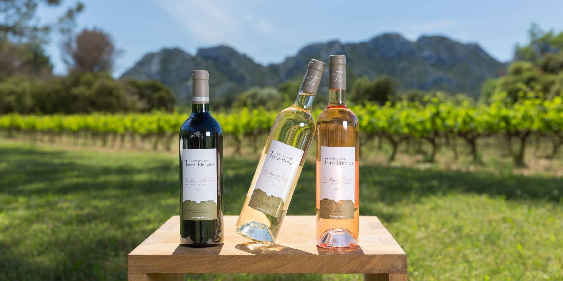 Лучшие вина прованса — история, регионы aoc, винодельни