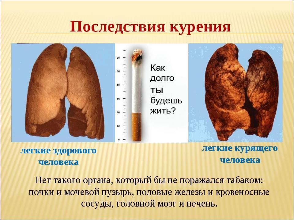 Курение и печень: какое влияние оказывает никотин