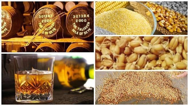 Самогон из кукурузы: рецепт кукурузной браги, как сделать дома