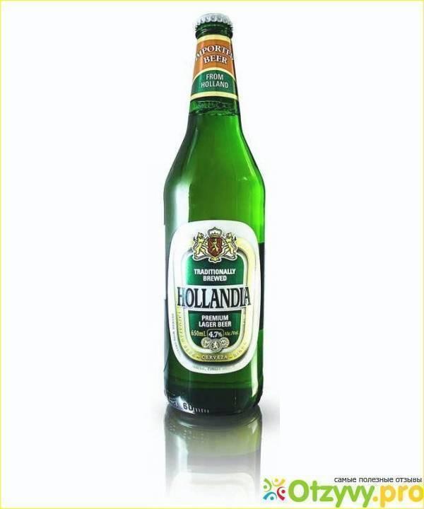 Сорта чешского, немецкого, российского, бельгийского и голландского пива