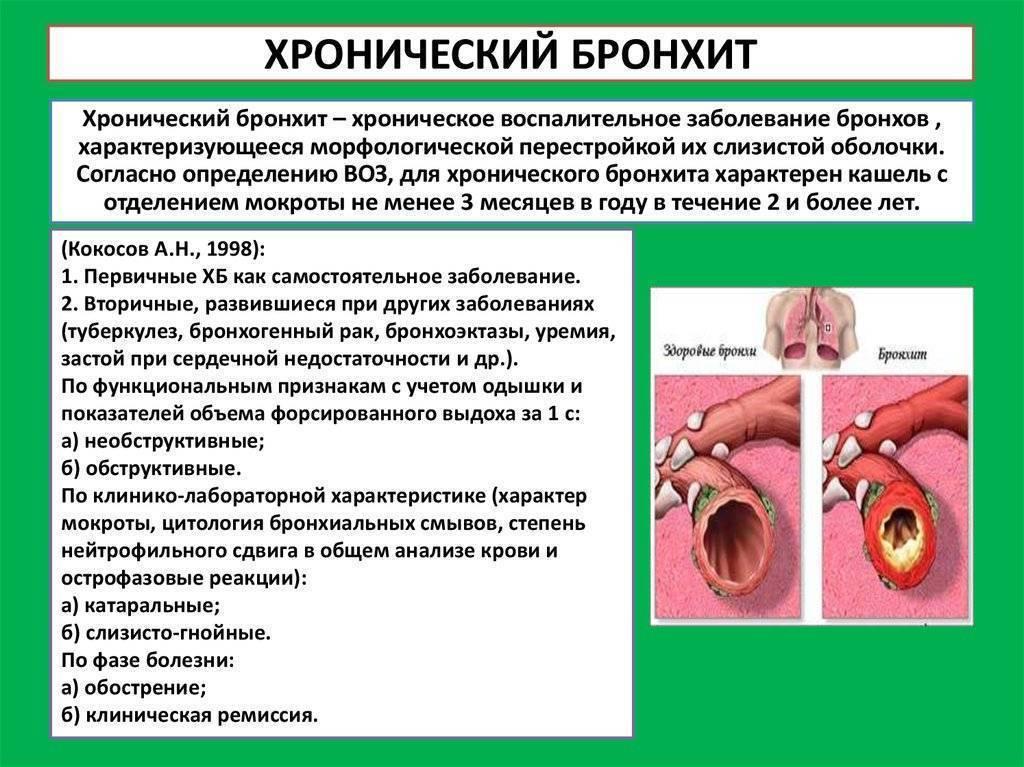 Бронхит курильщика: симптомы и лечение у взрослых, мокрота и температура, признаки хронического недуга и устранение антибиотиками и народными средствами